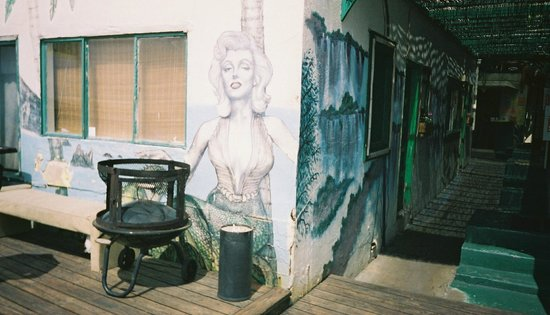 Beach Bungalow Hostel : Marilyn the mermaid...now sadly gone :(