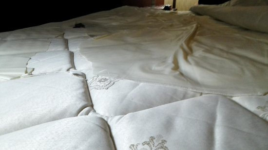 Lexington Inn at JFK Airport : Bed
