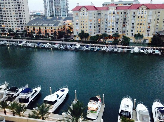 Tampa Marriott Waterside Hotel & Marina: View from room 907