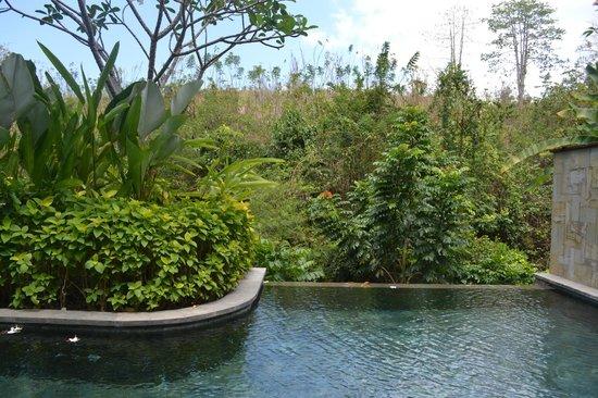 Gending Kedis Villas & Spa Estate: Pool view from villa
