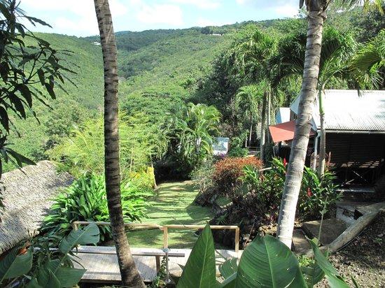 Domaine Karaibes : Vue sur le Jardin