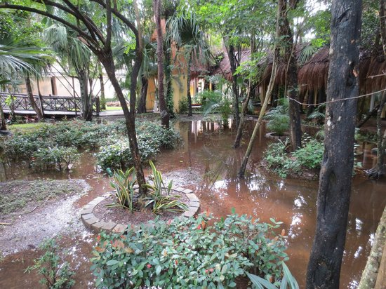 Iberostar Cozumel: They worked hard to dry these areas up with pumps to no avail.