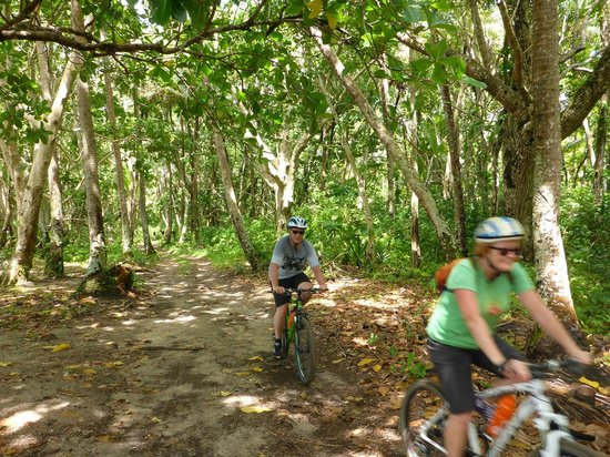 Vanuatu Ecotours: cycling through the bush