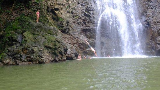 La Escuela Del Sol: diving at the lower falls, during spanish lab
