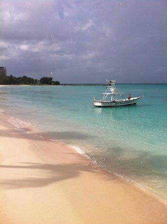 Radisson Aquatica Resort Barbados: Restaurant view!