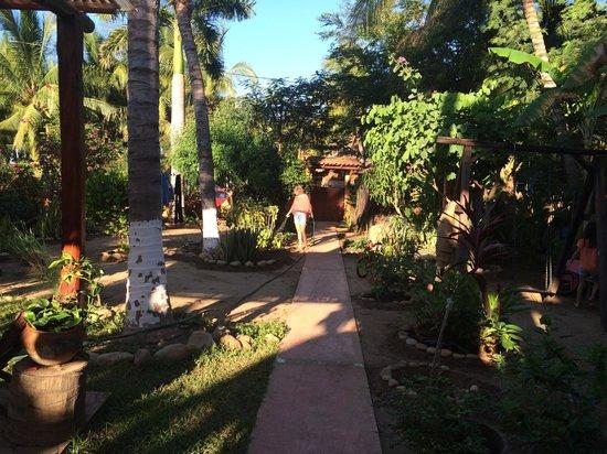 Puerto Surf: Trädgården