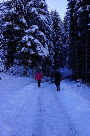 Berghotel Tirol: Hike Through the Winter Woods