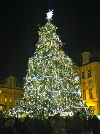 hotel kings court stunning 75 ft christmas tree in old town square