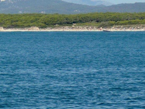 Playa de Es Trenc: BEACH-PLAYA ES TRENC