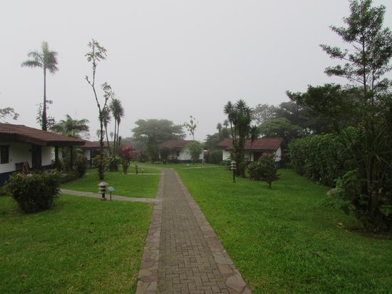 Villa Blanca Cloud Forest Hotel and Nature Reserve: View of cottages
