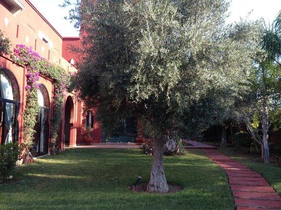 El Miria Palais Riad : végétation