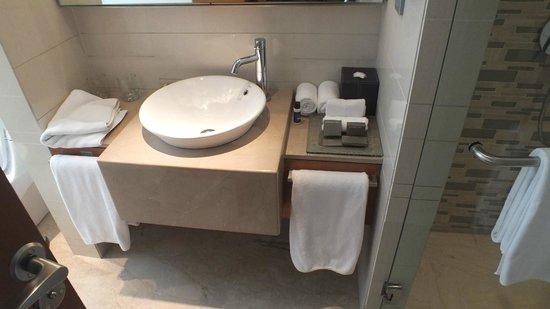 Hyatt Pune : bathroom view