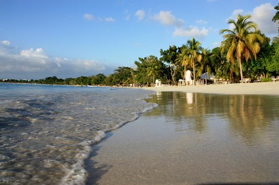 Hotel Riu Palace Tropical Bay: beach view