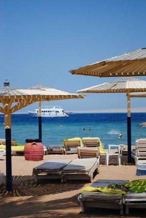 Hurghada SeaGull Beach Resort: пляж