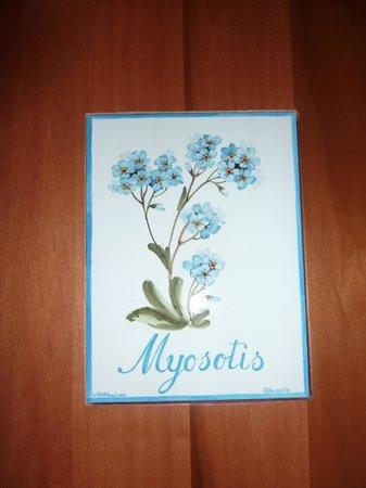 Hotel Le Bouquet : la camera Myosotis al pianterreno