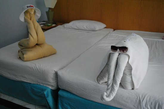 Hurghada SeaGull Beach Resort : змея и слон!