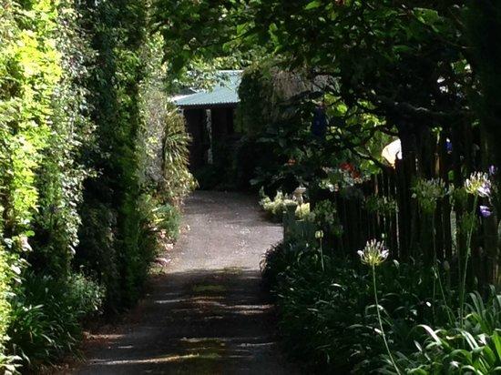 Mokoia Downs Estate B&B: Entrance down lush winding road