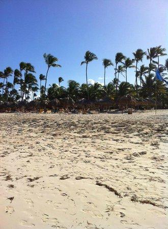 Iberostar Punta Cana: Beach