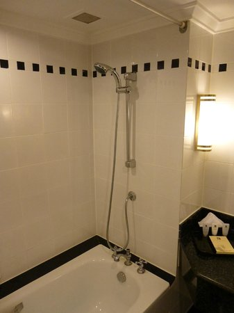 Saigon Prince Hotel : Shower over the bath