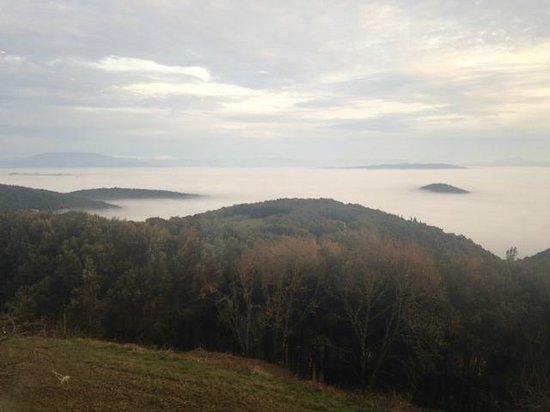 BlueBay Colle della Trinita Perugia : amazing view - fog in the morning ...