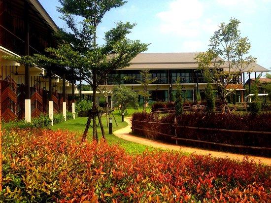 Ma Villa : Garden area