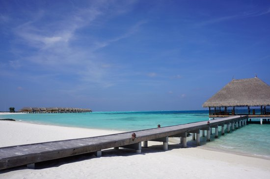 Constance Moofushi : beach and view of senior water viillas