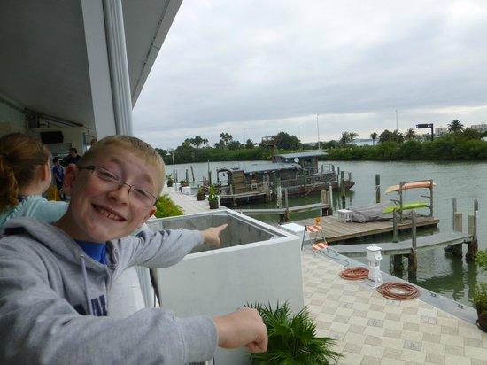 Clearwater Marine Aquarium: So fun!