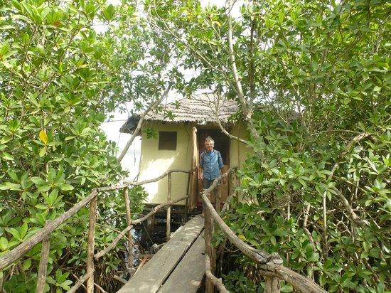 Bintang Bolong Lodge : via de loopplank naar je huisje