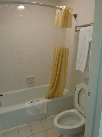 Americas Best Value Inn: Shower and toilet