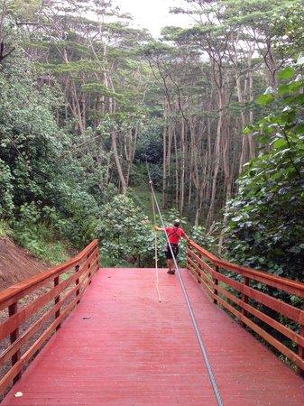 Kauai ATV Tours: One