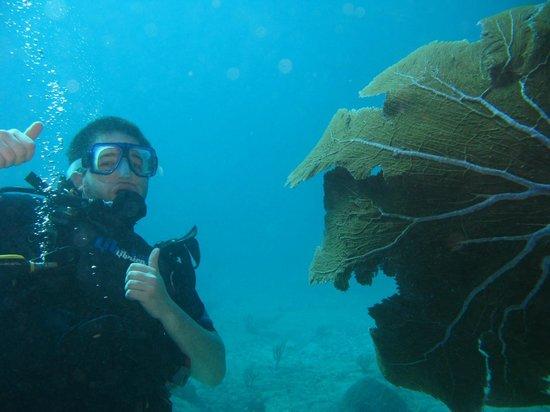Luum ha Divers: Seguridad en todo momento
