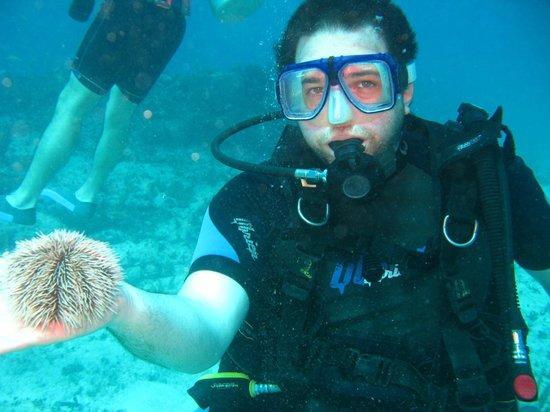 Luum ha Divers: Sorprendente