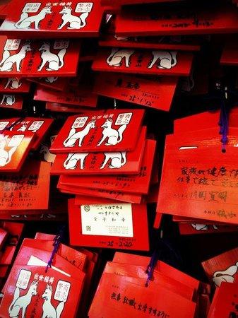 Narita Rainbow Tours: Wishes