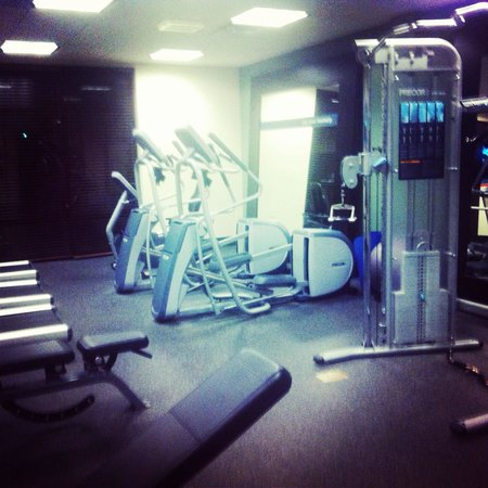 Hampton Inn & Suites Vineland: Fitness room with multiple treadmills and ellipticals. Also has free weights & other equipment.