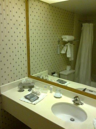Wyndham Glenview Suites Chicago North: Bathroom