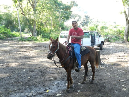 """Na'alapa Stables - Waipio Valley: One Of Our Guides - """"Kihoni"""""""