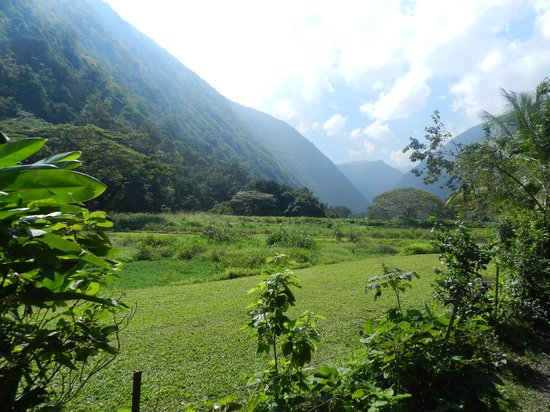 Na'alapa Stables - Waipio Valley: You Gotta Get Out Of THe Hotel To See This!