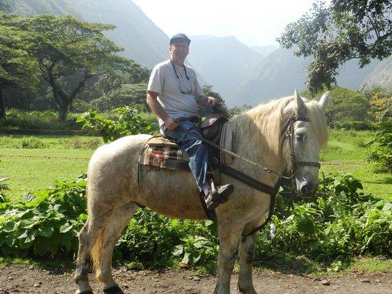 "Na'alapa Stables - Waipio Valley: My Ride, My Pal  - ""Smokey"""