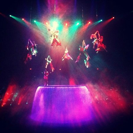 Le Reve - The Dream: During the show