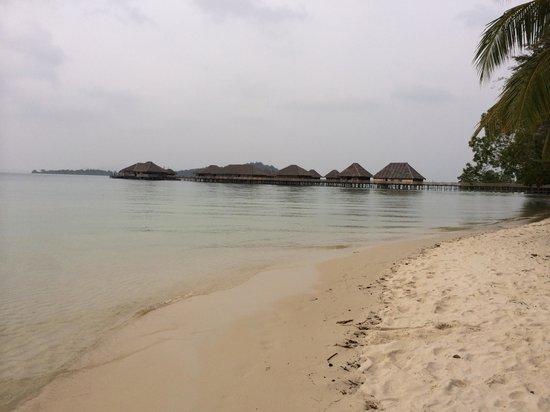 Telunas Resorts - Telunas Beach Resort: Beach looking back to the rooms