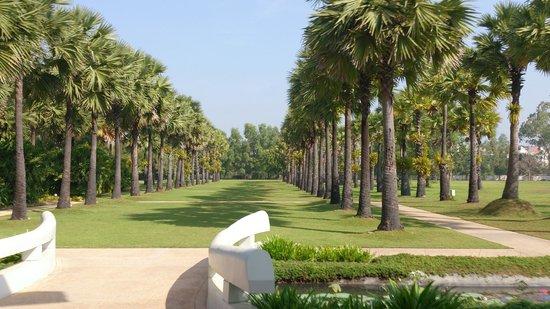 Le Méridien Angkor: 酒店明亮大氣的後花園