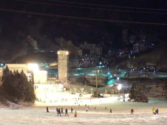 Naeba Ski Resort : ナイター