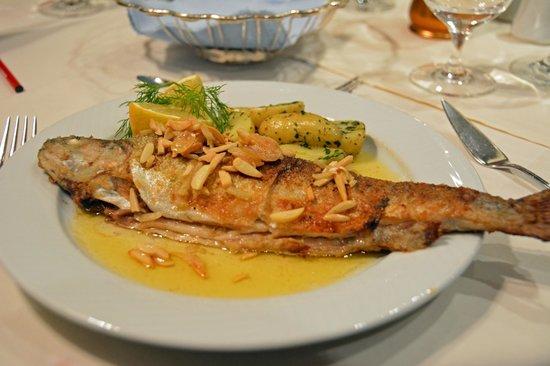 Parkhotel Seefeld : Leutasch trout