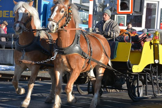 Parkhotel Seefeld : Horse and carriage ride from hotel