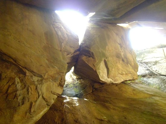 Sultan Bathery, Indien: cave upper part from bottom