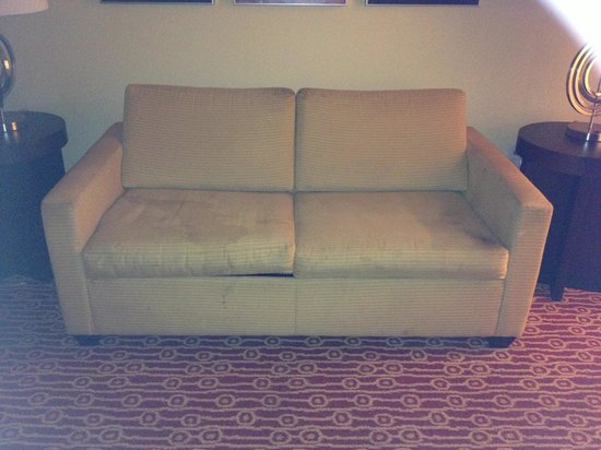 TownePlace Suites Savannah Airport: Couch loaded with pet urine stains!!