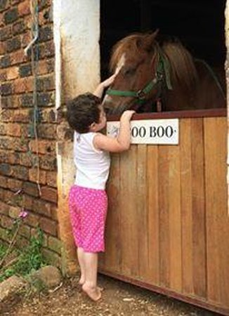Lydenrust Guest Farm: Nikita and Boo Boo