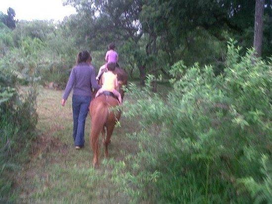 Lydenrust Guest Farm: Nature