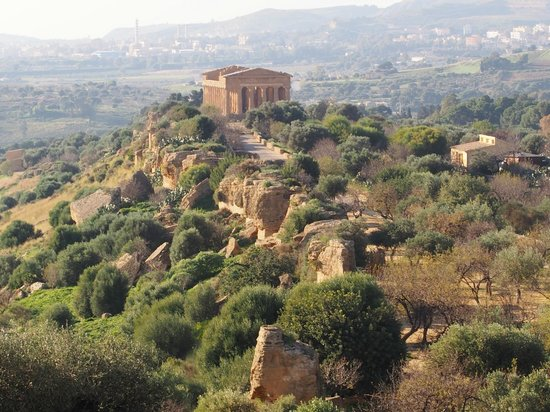 Tempio di Giunone: ジュノーネ神殿 (ヘラ神殿)・・・コンコルディア神殿の眺望