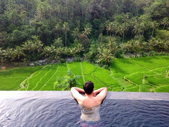 Black Penny Villas Ubud : View from the villa's private pool.